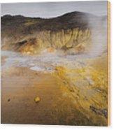 Geothermal Area Wood Print