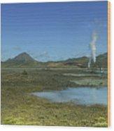 Geothermal Power Station Iceland  Wood Print