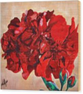 Geranium Bloom Wood Print