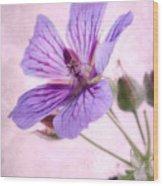 Geranium Maculatum Wood Print
