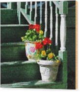 Geraniums And Pansies On Steps Wood Print