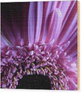 Gerber Daisy Watercolor Wood Print