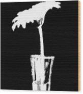 Gerber On Black Wood Print