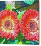 Gerbera Couple Wood Print