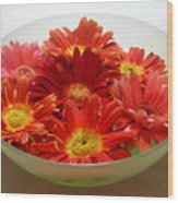 Gerbera Daisies - A Bowl Full Wood Print