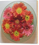 Gerbera Daisies - From Above Wood Print