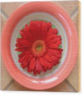 Gerbera Daisy - Bowled On Tile Wood Print