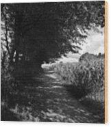 German Path Black And White Wood Print