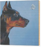 German Pinscher Wood Print