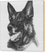 German Shepherd Head Wood Print