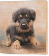 German Shepherd Puppy Portrait Wood Print