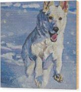 German Shepherd White In Snow Wood Print by Lee Ann Shepard