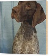 German Shorthaired Pointer 129 Wood Print