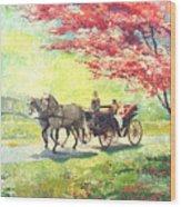 Germany Baden-baden Lichtentaler Allee Spring 2 Wood Print