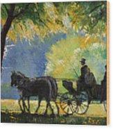 Germany Baden-baden Lichtentaler Allee Spring  Wood Print