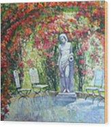 Germany Baden-baden Rosengarten 02 Wood Print