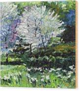 Germany Baden-baden Spring 2 Wood Print