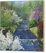 Germany Baden-baden Spring Wood Print
