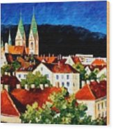 Germany Freiburg Wood Print