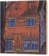 Germany Ulm Wood Print by Yuriy  Shevchuk