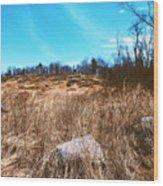 Gerttysburg Series Little Round Top Wood Print