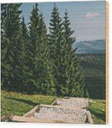 Gesia Szyja Way Up Wood Print
