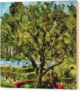 Getty Villa Landscape Wood Print