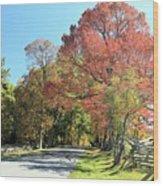 Gettysburg  In The  Fall Wood Print
