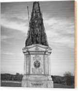 Gettysburg National Park 42nd New York Infantry Monument Wood Print
