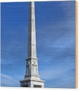 Gettysburg National Park United States Army Regulars Memorial Wood Print