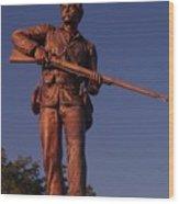 Gettysburg Statue Wood Print