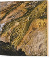 Geyser Basin Springs Wood Print