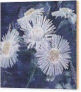 Ghost Flowers Wood Print
