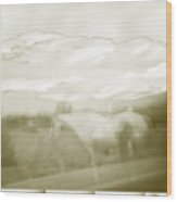 Ghost Horse Colorado Wood Print
