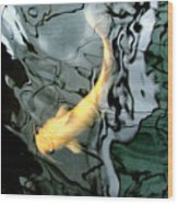 Ghost Koi Carp Fish Wood Print