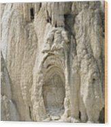 Ghost Of Mammoth Hot Springs Wood Print