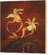 Ghost Orchids Wood Print