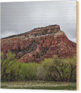 Ghost Ranch View Wood Print