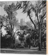 Ghostly Bok Tower Wood Print