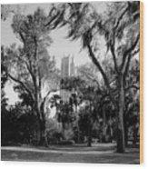 Ghostly Bok Tower Wood Print
