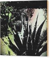 Giant Agave Wood Print