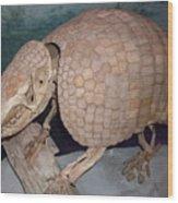 Giant Armadillo 2 Wood Print