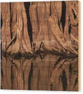 Giant Cypress Tree Trunk And Reflection Wood Print