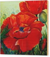Giant Poppies 3 Wood Print