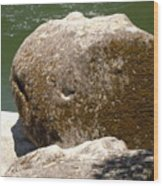 Giant Prehistoric Petrafied Tadpole Wood Print