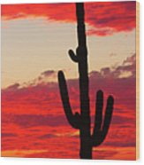 Giant Saguaro  Southwest Desert Sunset Wood Print