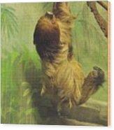 Giant Sloth     June          Indiana Wood Print