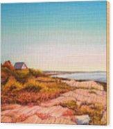 Giant Steps Maine Wood Print