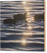 Gifts Of Sunshine Wood Print