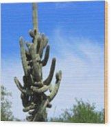 Gigantea Saguaro Old And Strong Wood Print
